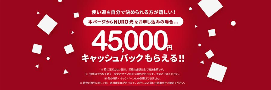 NURO光のキャッシュバックサイト